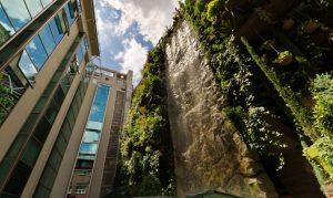 jardin vertical hotel mecure santo domingo madrid